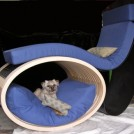 PAWS-Custom-Seating